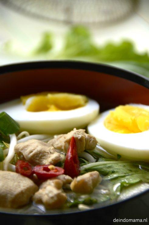 Udon Noodle close