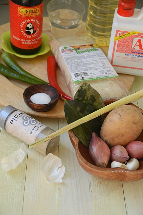 ingrediënten-oseng-tempéh-ketjap